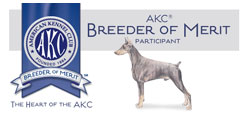 AKC-Breeder-of-Merit-Banner